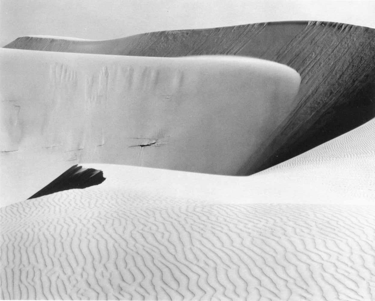 Edward Weston, Dunes. Oceano, 1936