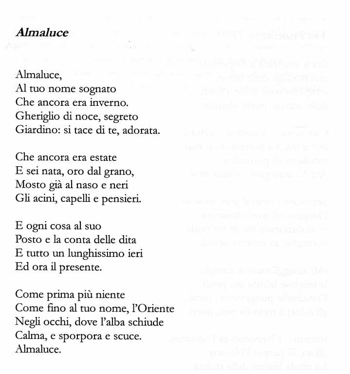 """Silvia Secco, da """"L'equilibrio della foglia in caduta"""", CFR 2014"""
